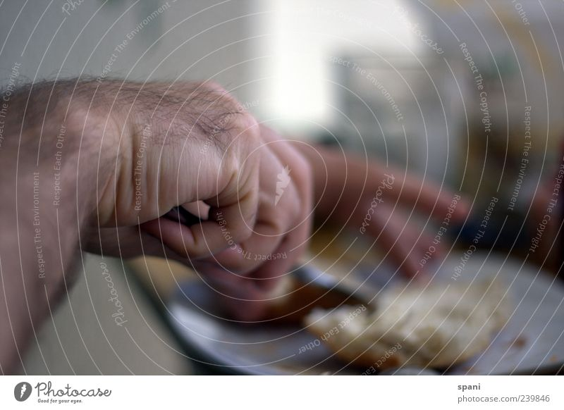 scrumptious Roll Butter Breakfast Plate Knives Human being Hand Fingers Eating Interior shot Close-up Detail Morning Blur Back-light Make Cooking