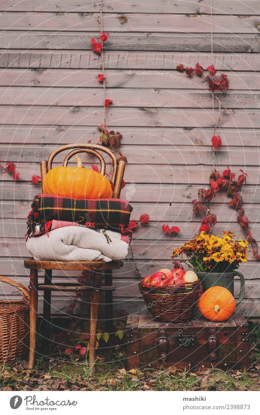 fall at country house. Seasonal rustic decorations Apple Lifestyle House (Residential Structure) Decoration Thanksgiving Plant Autumn Warmth Flower Wood Growth
