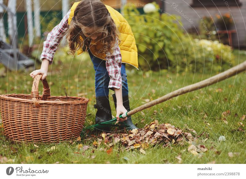 child girl picking leaves into basket Joy Garden Child Work and employment Gardening Autumn Tree Grass Leaf Natural Yellow Gardener Helper kid walk country