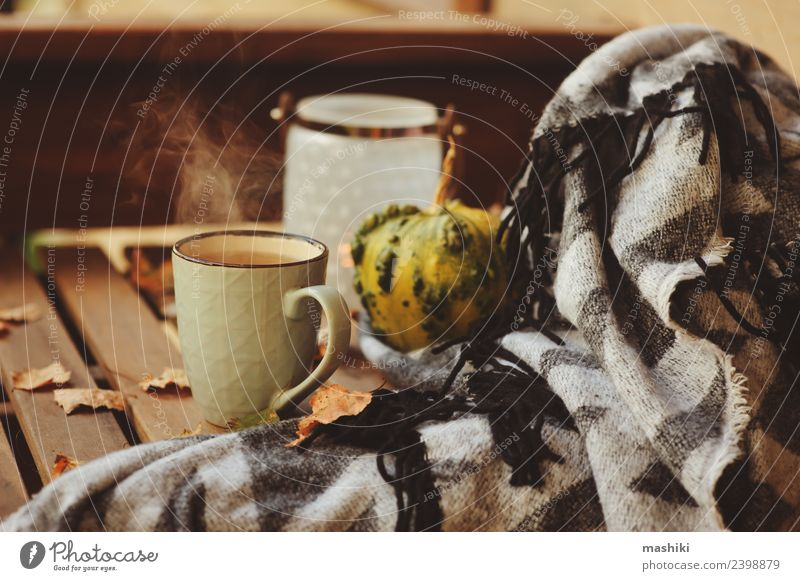 cozy autumn morning at country house Relaxation Leaf Warmth Lifestyle Autumn Wood Garden Dream Decoration Modern Table Seasons Hot Home Tea Still Life