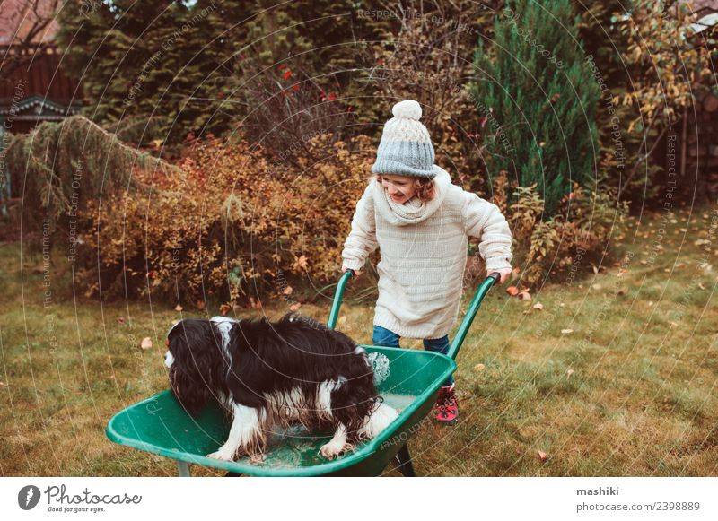 funny child girl riding her dog in wheelbarrow Lifestyle Joy Playing Garden Child Friendship Infancy Autumn Weather Sweater Pet Dog Happiness fall Wheelbarrow