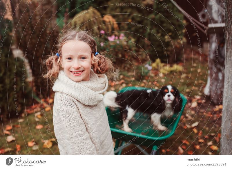 happy child girl riding her dog in wheelbarrow Child Dog Leaf Joy Lifestyle Autumn Playing Garden Friendship Weather Infancy Action Happiness Seasons Pet Rural