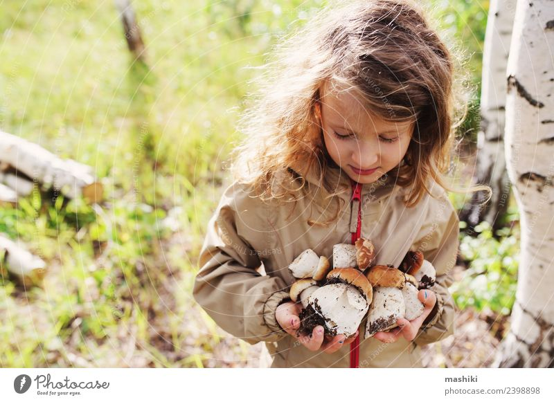 kid girl picking wild mushrooms Girl 3 - 8 years Child Infancy Going Forest explore Wild Autumn Summer Walking Mushroom Small Tree Freedom Nature Seasons