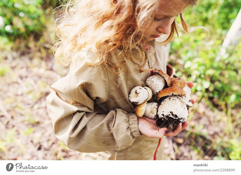 child girl picking wild mushrooms in forest Child Walking Mushroom picker explore Wild Forest Summer Nature Vacation & Travel Natural Girl Camping Traveling