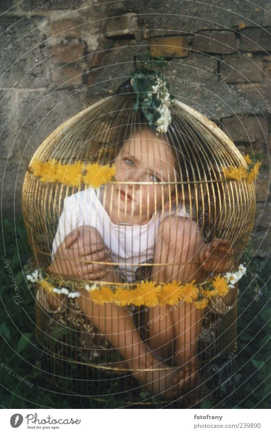child in golden cage Children's game Parenting Girl Infancy 1 Human being 3 - 8 years Flower Wall (barrier) Wall (building) Cage Playing Sadness Wait Dark Free