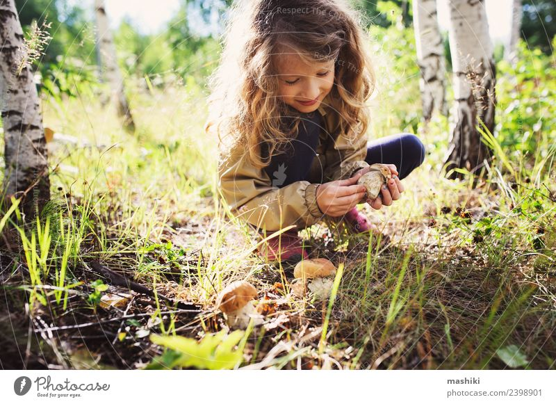 child girl picking wild mushrooms Child Nature Vacation & Travel Summer Tree Joy Forest Lifestyle Autumn Wild Infancy Happiness Walking 8 - 13 years Mushroom
