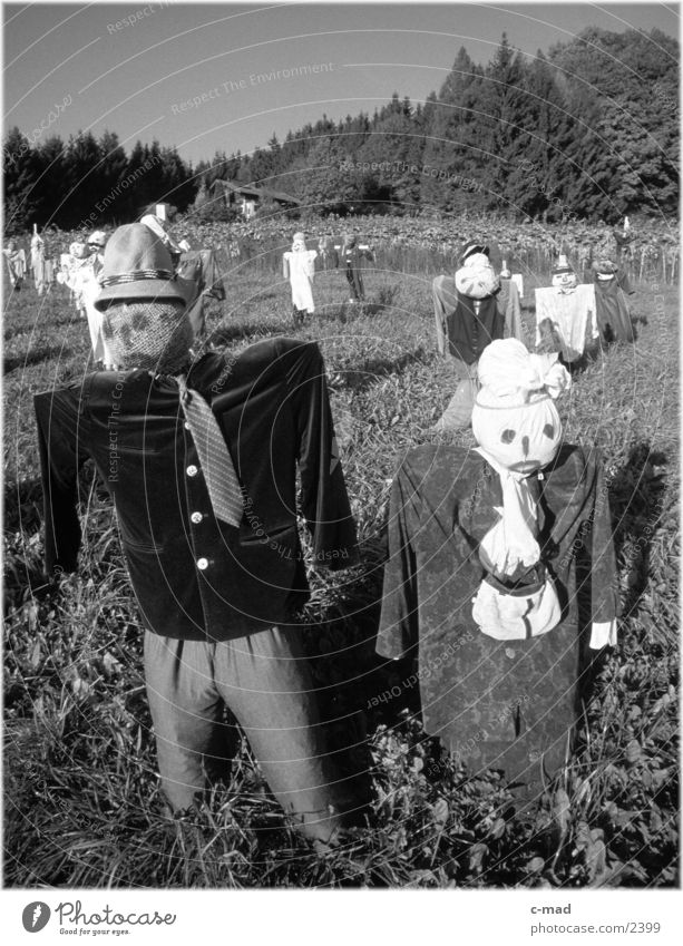 Scarecrows V Rural Meadow Obscure Landscape Nature Black & white photo