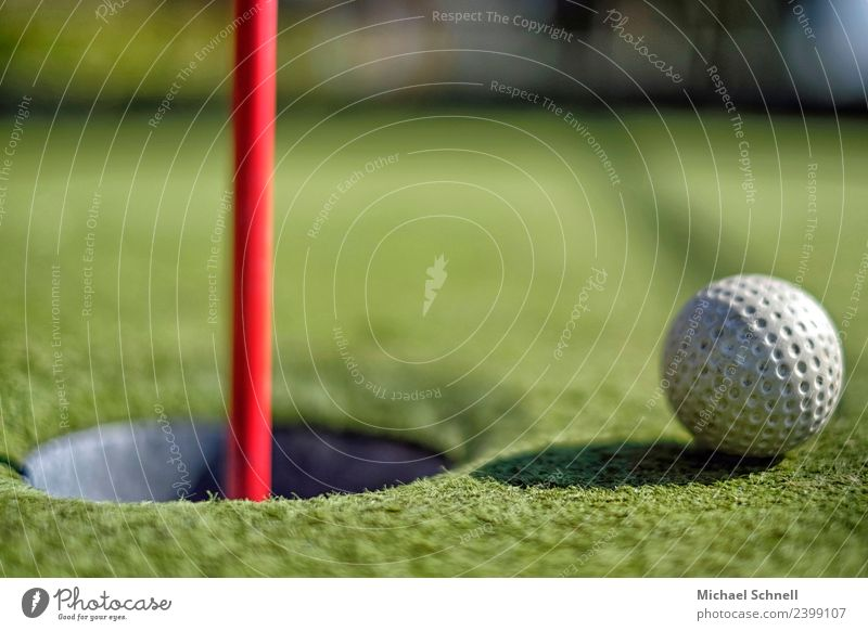 Shortly before the goal Leisure and hobbies Playing Mini golf Golf Relaxation Athletic Green Red White Euphoria Optimism Curiosity Success Desire Target