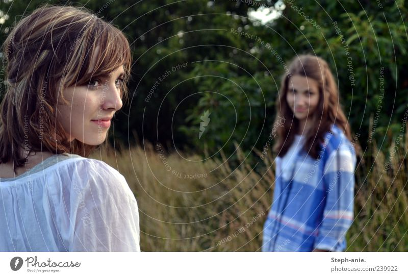 Summer blues. Feminine Young woman Youth (Young adults) 2 Human being Nature Grass Observe Beautiful Friendship Mysterious Idyll Dream Past Future Brunette