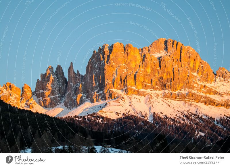 Dolomites Environment Nature Landscape Blue Brown Yellow Gold Black White Forest Mountain South Tyrol Snow Sky Peak Colour photo Exterior shot Deserted
