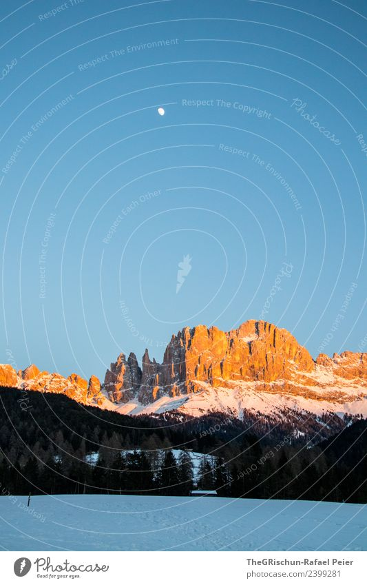 Dolomites Environment Nature Landscape Blue Brown Multicoloured Gold Black White Bergen Mountain South Tyrol Vantage point Splendid Looking Sunset Moody Snow