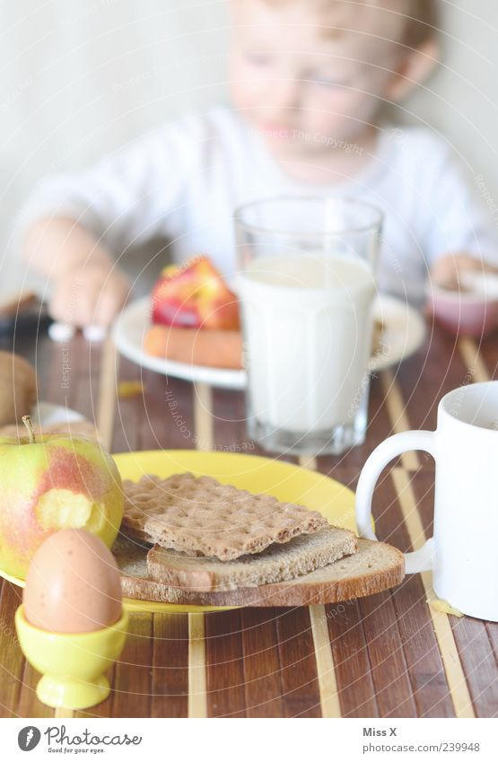 Human being Child Nutrition Eating Healthy Fruit Infancy Fresh Table Beverage Coffee Apple Toddler Appetite Bread Delicious