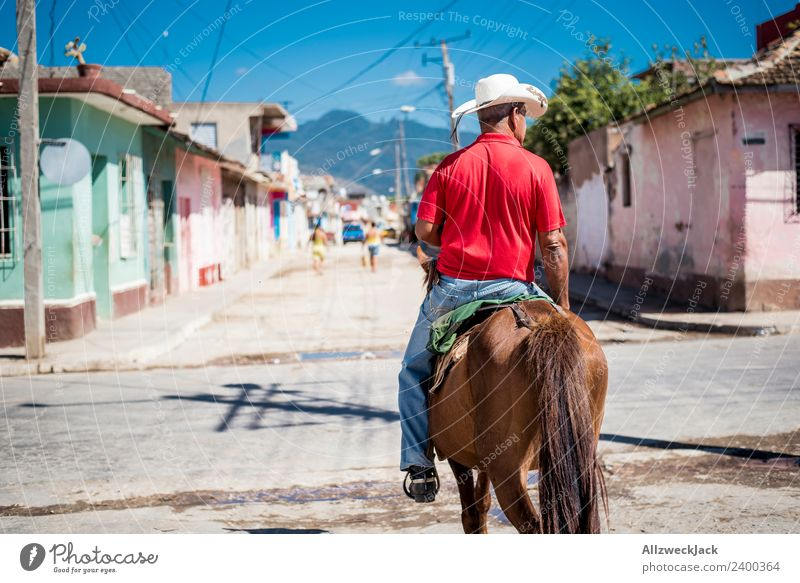 Vacation & Travel Man Old Summer Sun Animal Travel photography Street Warmth Retro Historic Horse Cuba Depth of field Blue sky Pride