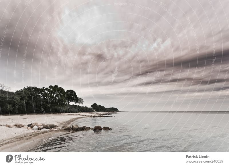I won´t be found Beautiful Beach Ocean Environment Nature Landscape Sand Water Sky Clouds Weather Forest Waves Coast Baltic Sea Discover Freedom Horizon Idyll