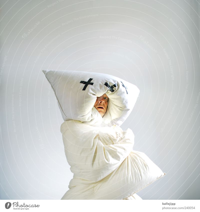 Human being Man White Animal Adults Cold Head Wild animal Exceptional Masculine Uniqueness Protection Whimsical Fear of the future Cushion Concern