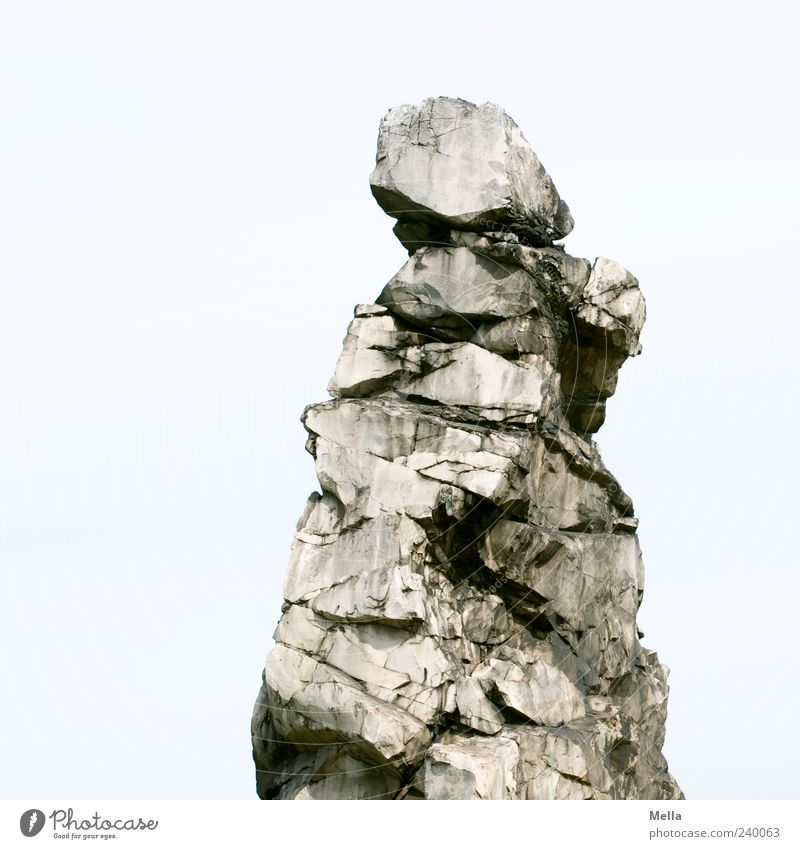 chaffinch Environment Nature Rock Stone Stand Firm Natural Bizarre Harz stone-biter Colour photo Exterior shot Deserted Copy Space left Day Exceptional