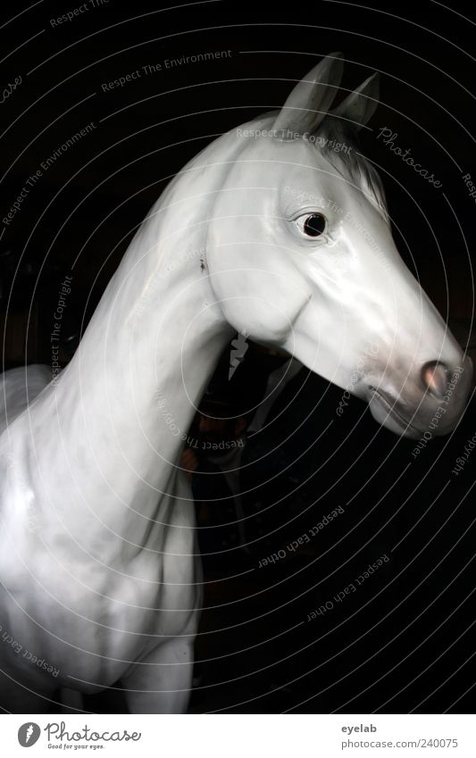 Beautiful Animal Eyes Gray Head Elegant Esthetic Cute Horse Plastic Thin Statue Trashy Figure Neck False