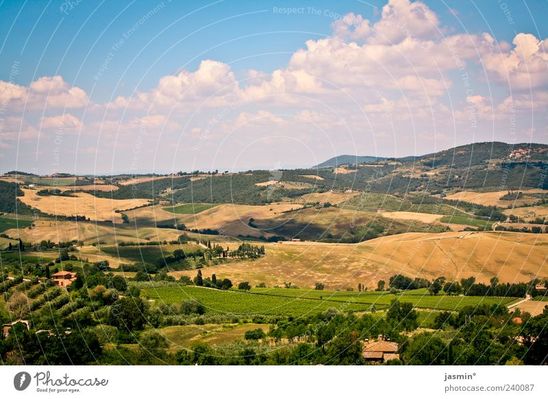 I want to go back! Environment Nature Landscape Earth Air Sky Clouds Sunlight Summer Weather Beautiful weather Plant Tree Grass Meadow Field Hill