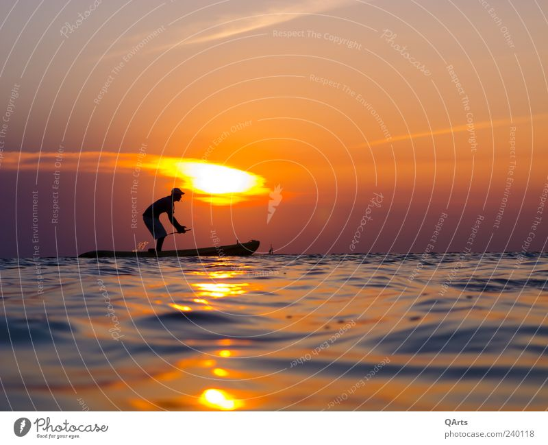 Human being Man Vacation & Travel Sun Summer Ocean Beach Calm Adults Far-off places Freedom Swimming & Bathing Waves Leisure and hobbies Island Tourism
