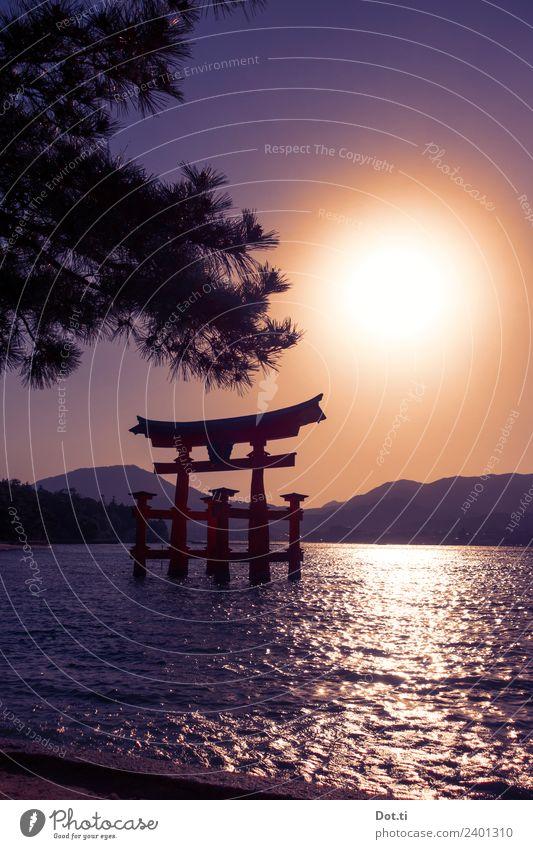Shinto Shrine Architecture Landscape Water Cloudless sky Sun Sunrise Sunset Sunlight Mountain Coast Island Miyajima Japan Asia Tourist Attraction Landmark Idyll