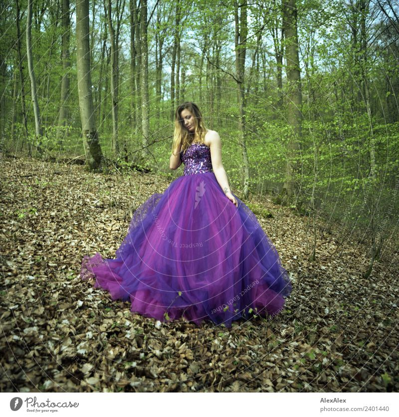 Fairy in purple wedding dress in the forest 4 - Purple mood forest fairy Lifestyle Luxury Elegant Style Calm Trip Young woman Youth (Young adults) 18 - 30 years