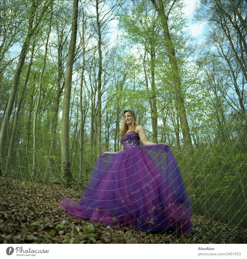 Fairy in purple wedding dress in the forest - purple mood forest fairy Lifestyle Shopping Style Harmonious Trip Young woman Youth (Young adults) 18 - 30 years