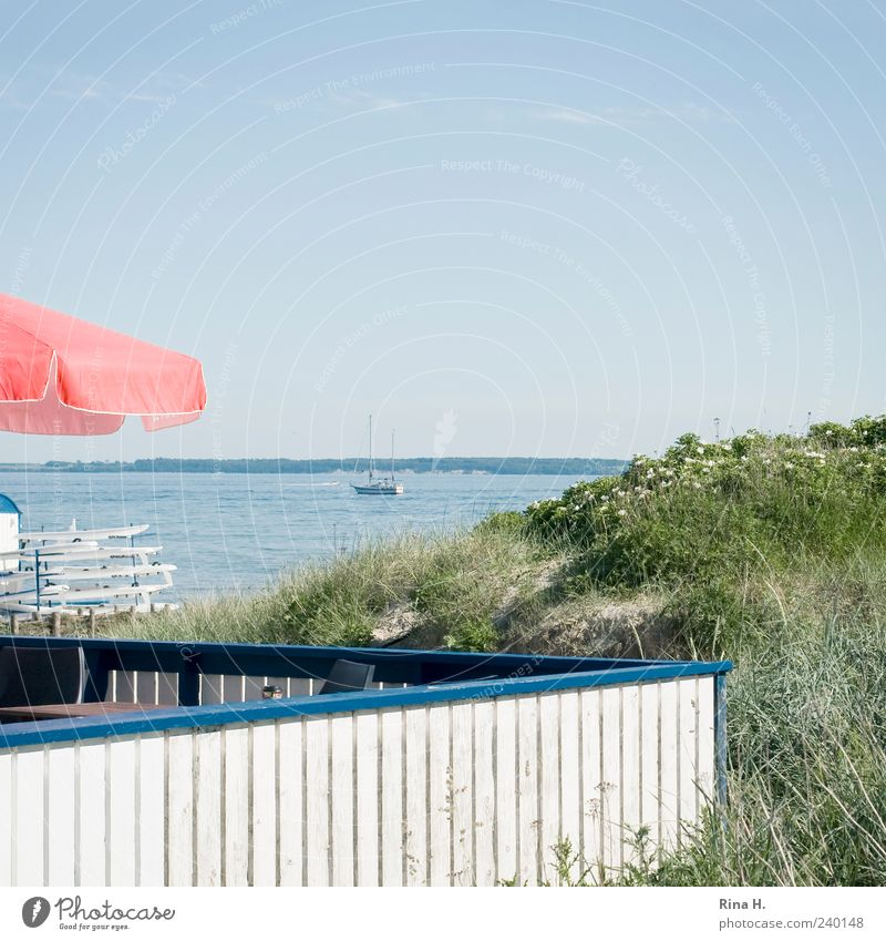 like ice in the sunshine Lifestyle Beach bar Landscape Water Sky Horizon Summer Baltic Sea Terrace Sailboat Bright Relaxation Leisure and hobbies