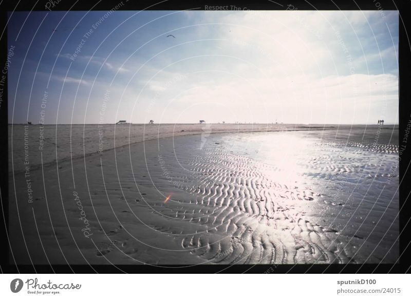 Saint Peter Back-light Beach Horizon Sun Mud flats Sky