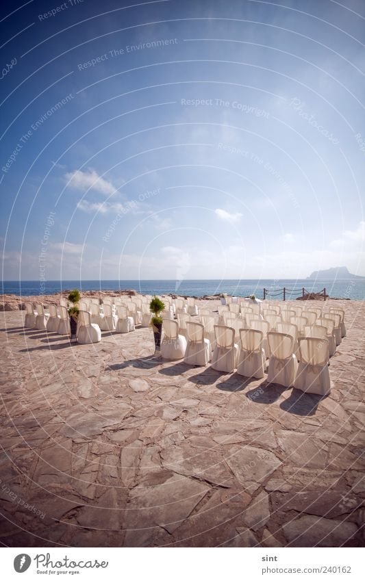 dream wedding Elegant Style Summer Beautiful weather Coast Ocean White Horizon Colour photo Exterior shot Copy Space top Day Sunlight Chair Row of chairs