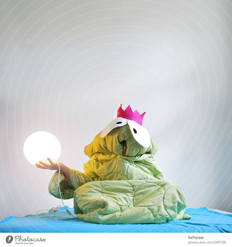 Once upon a time ... Human being Masculine Man Adults 1 Art Theatre Stage Actor Culture Animal Frog Green Prince Might Frog Prince Fairy tale Duvet Pillow Crown