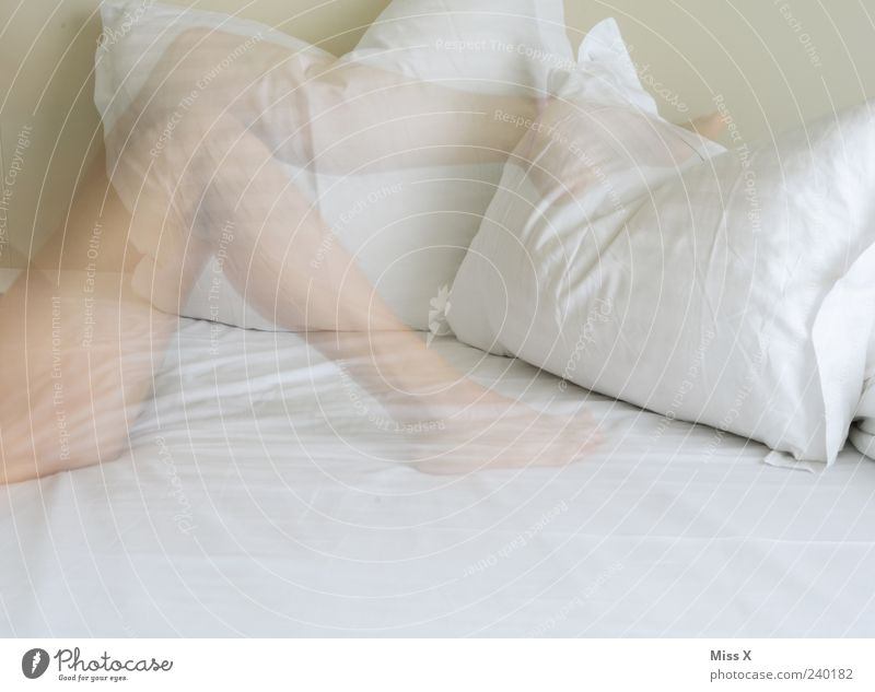 fleeting Bed Human being Feminine Young woman Youth (Young adults) Legs Feet 1 18 - 30 years Adults Lie Beautiful White Cushion Naked Naked flesh Colour photo
