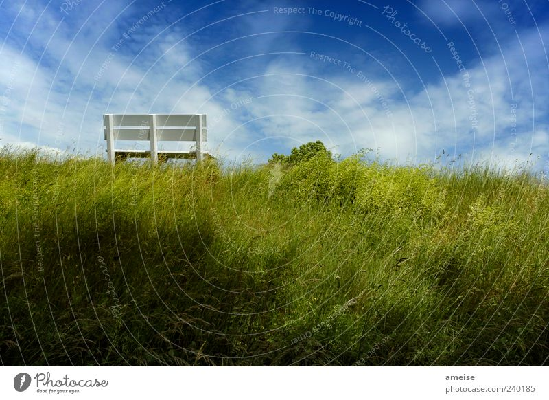 Sky Nature Blue White Green Summer Clouds Calm Relaxation Grass Wind Beautiful weather Bench Hill Dike Park bench