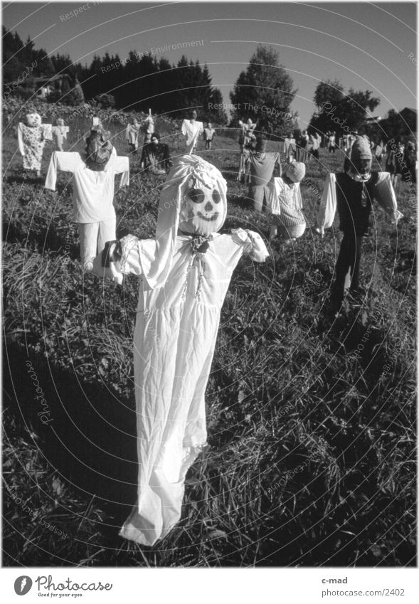 Scarecrow II Rural Meadow Obscure Landscape Nature Black & white photo
