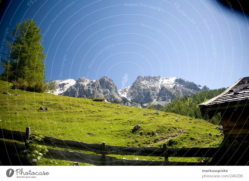 Mountain hut with view Vacation & Travel Far-off places Freedom Alpine hut Landscape Plant Animal Tree Grass Foliage plant Hill Rock Alps Dachstein mountains