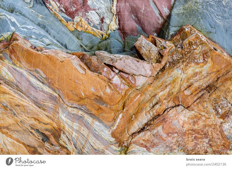 Sedimentary rocks texture Beach Ocean Science & Research Geology Geologist Environment Nature Landscape Elements Earth Coast Tourist Attraction Blue Yellow Red