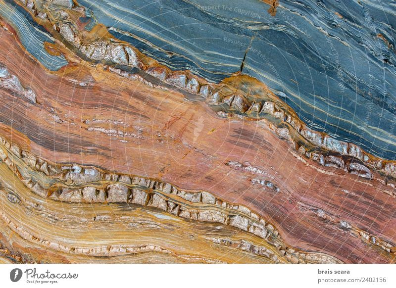 Sedimentary rocks texture Vacation & Travel Beach Ocean Science & Research Geology Geologist Art Environment Nature Earth Coast Tourist Attraction Stone