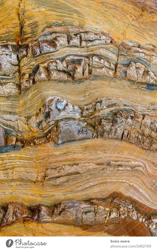 Sedimentary rocks texture Beach Ocean Science & Research Geography Geology Geologist Environment Nature Earth Coast Tourist Attraction Stone Yellow Colour Art