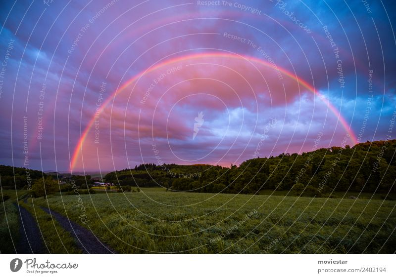Regenbogenland Environment Nature Landscape Air Drops of water Sky Storm clouds Sunrise Sunset Sunlight Spring Beautiful weather Rain Grass Field Forest