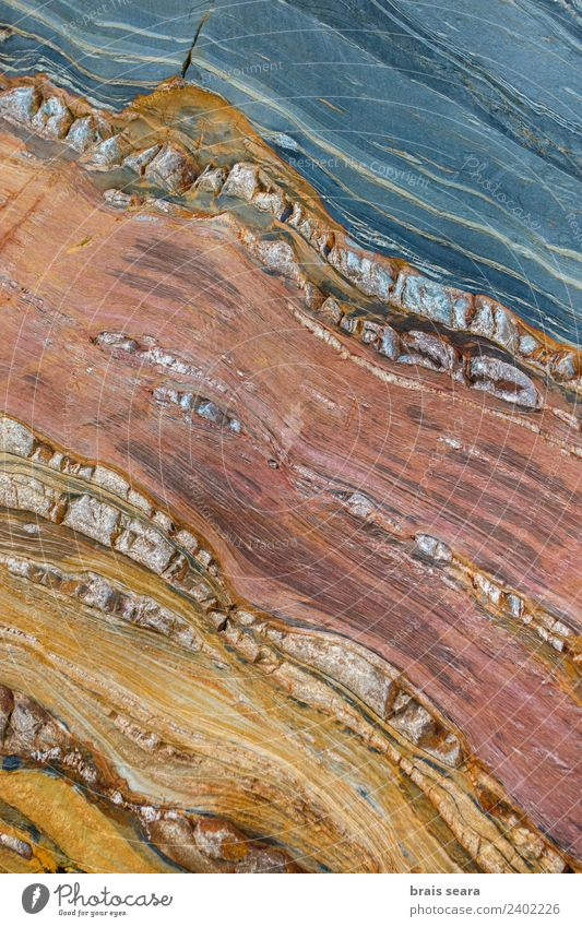 Sedimentary rocks texture Beach Ocean Education Science & Research Geology Geography Profession Geologist Environment Nature Earth Coast Tourist Attraction
