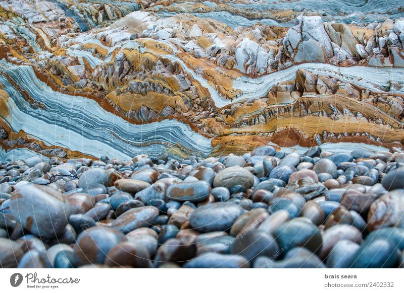 Sedimentary rocks texture Beach Ocean Science & Research Adult Education Geography Geology Geologist Profession Environment Nature Earth Coast Stone Natural