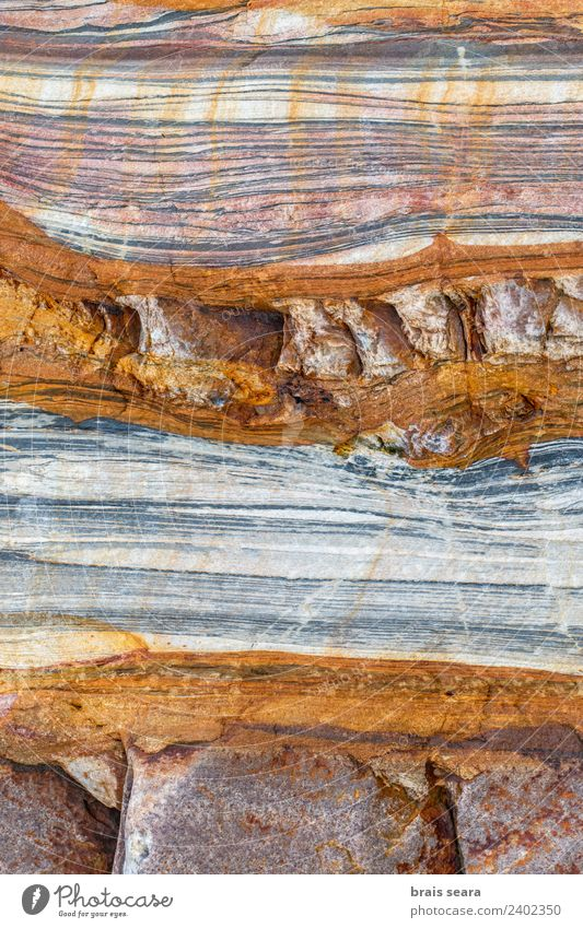 Sedimentary rocks texture Beach Ocean Education Science & Research Geology Profession Geologist Environment Nature Earth Coast Tourist Attraction Stone Natural