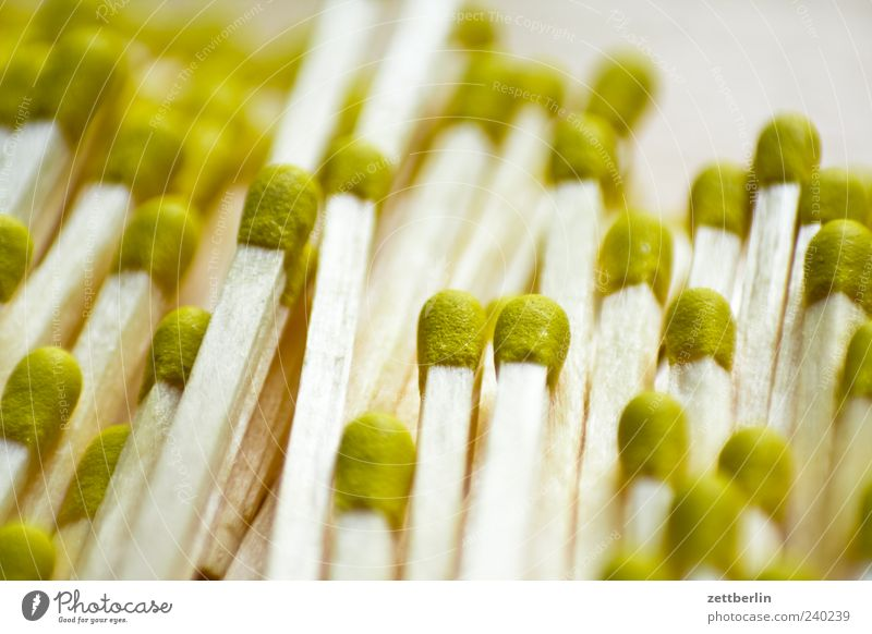 matches Wood Match Many Colour photo Interior shot Close-up Detail Macro (Extreme close-up) Deserted Neutral Background Deep depth of field Bright background