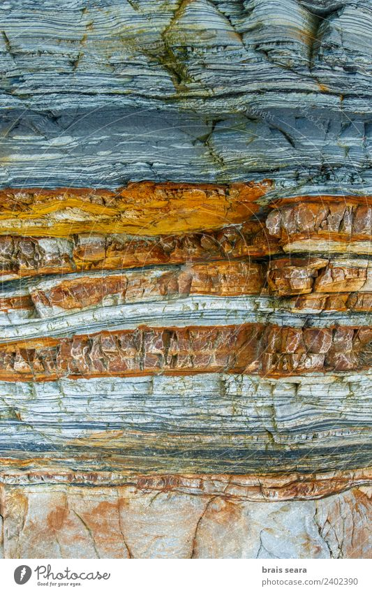 Sedimentary rocks texture Beach Ocean Education Science & Research Geology Profession Geologist Environment Nature Earth Coast Tourist Attraction Stone Blue