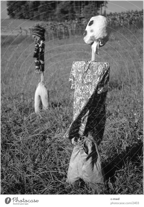 Scarecrows I Rural Meadow Obscure Landscape Nature Black & white photo