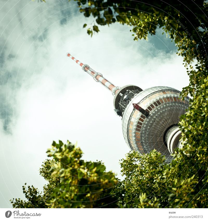 treetop Culture Environment Sky Clouds Weather Tree Leaf Capital city Tower Manmade structures Tourist Attraction Landmark Green Tourism Berlin Germany Europe