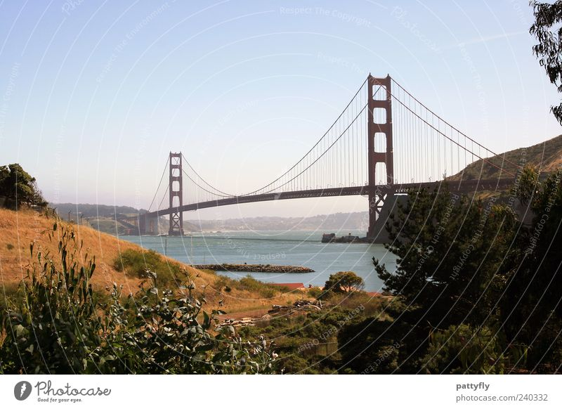 the one! Landscape Water Summer Coast Bay Ocean San Francisco bay Bridge Navigation Fantastic Infinity Historic Authentic Tourism Golden Gate Bridge California