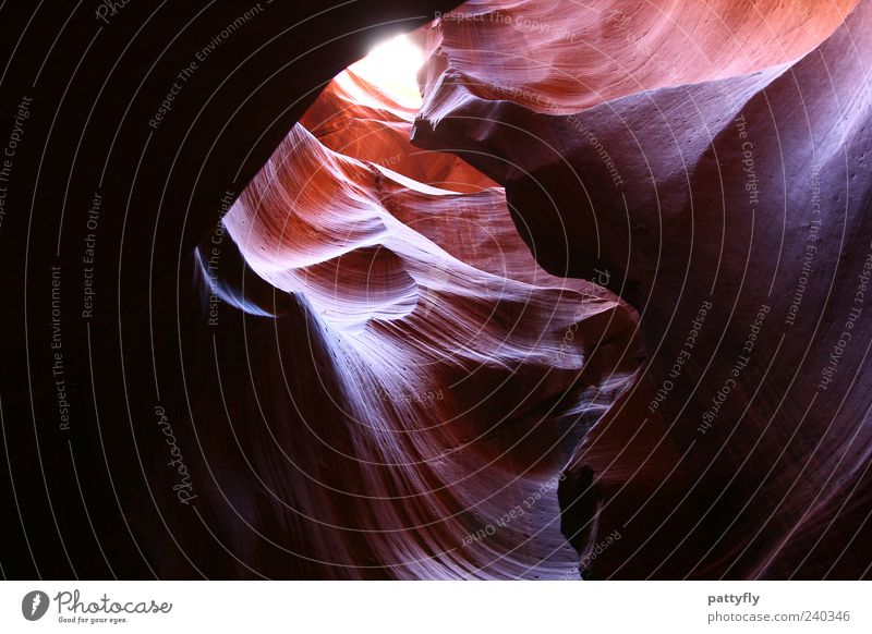 Waves Environment Nature Landscape Elements Antelope Canyon Exceptional Fantastic Moody Colour photo Exterior shot Abstract Structures and shapes Day Light