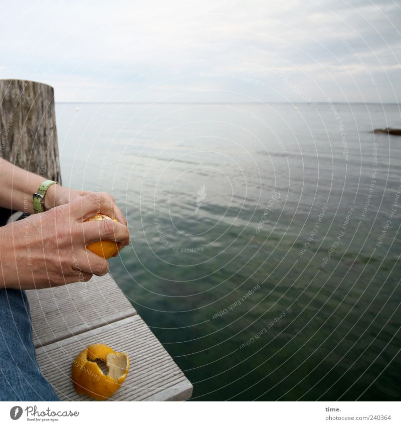 Last Supper Orange Ocean Human being Hand Fingers 1 Water Sky Horizon Baltic Sea Wood Molt Footbridge Bollard Tropical fruits Citrus fruits Food Fruit