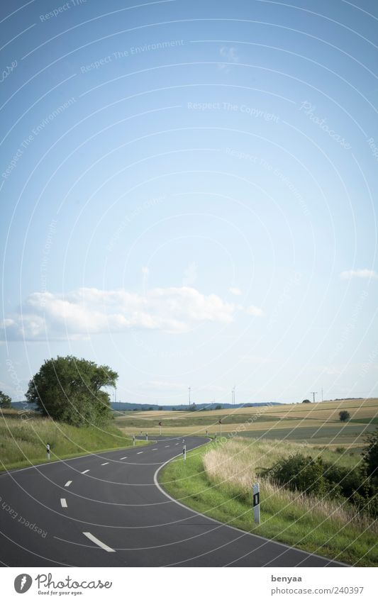 along the road Landscape Sky Summer Field Transport Traffic infrastructure Street Lanes & trails Nature Vacation & Travel Environment Curve Colour photo