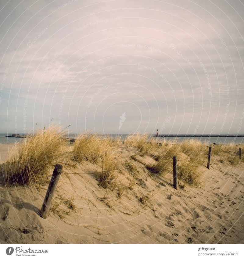 early summer days Environment Nature Landscape Plant Sand Water Sky Clouds Summer Beautiful weather Coast Beach Baltic Sea Ocean Natural Dune Beach dune